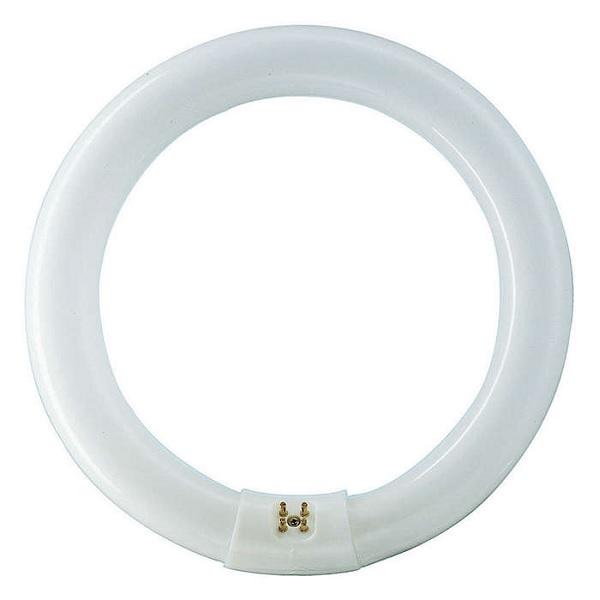 Kompaktní žářivka G10q kruhová Philips Master TL-E 32W/840